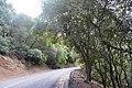 Carquinez Scenic Drive - panoramio.jpg