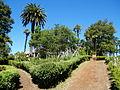 Casas patronales y Parques del Fundo Hualpén, jardín.JPG