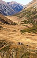 Caucasian Biosphere Reserve0 Autumne.jpg