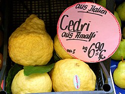 meaning of citrus