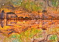 Cenote wall.jpg