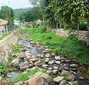 Center River of Margosatubig.jpg