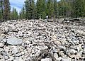 Central Idaho Debris Flow.jpg