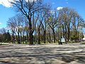 Central park in Vinnytsia April 2017 - 1.jpg