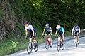 Cevennes-1025 - Flickr - Ragnhild & Neil Crawford.jpg