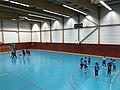 Championnat de France féminin de handball U18 - ENTENTE PAYS DE L'AIN vs LA MOTTE-SERVOLEX (2017-11-12) - 1.JPG