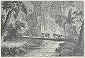 Chevalier - Les voyageuses au XIXe siècle, 1889 (page 106 crop).jpg