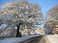 Christmas soon - panoramio.jpg