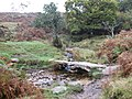 Clapper Bridge near Combestone Tor - geograph.org.uk - 1543050.jpg