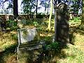 Cmentarz żydowski w Dobrodzieniu21.JPG