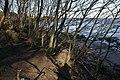 Coastal erosion south of St Baldred's Cradle - geograph.org.uk - 1232250.jpg