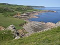 Coastline east from Prawle Point - geograph.org.uk - 845271.jpg