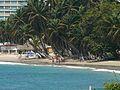 Cocoteros Playa Pampatar.JPG