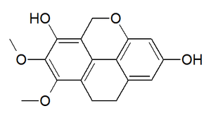 Coelogin - Chemical structure of coelogin