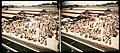 Collectie NMvWereldculturen, TM-10050808, Stereodia- 'Stereolichtbeeld, onderdeel van reisverslag', fotograaf onbekend, 1930-1950.jpg