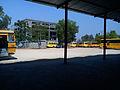 College bus shelter.jpg