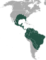 Common Long-nosed Armadillo area.png
