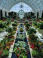Como Park Zoo and Conservatory - 47.jpg