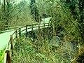 Confluence of the Afon Pedran and Afon Mamog - geograph.org.uk - 400477.jpg