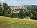 Constitution Hill and view across Hadleigh - geograph.org.uk - 1439054.jpg