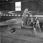 Convair negative (36341343796).jpg