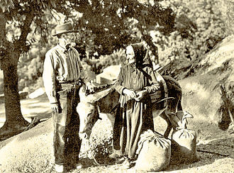 Cuisine of Corsica - Chestnut picking in Castagniccia (end of 19th century)