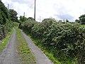 Country lane, Wardhouse - geograph.org.uk - 1431751.jpg