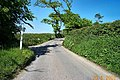 Country road - Devon - geograph.org.uk - 15870.jpg