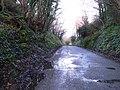Country road near Ennistymon - geograph.org.uk - 1603207.jpg