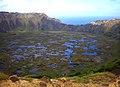 Cráter del Volcán Rano Kau - panoramio.jpg