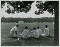 Cricket at Hagley Park, Christchurch (16496024911).jpg