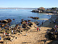 DSC26374, Cannery Row, Monterey, California, USA (6799489813).jpg