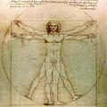 Da Vinci Vitruve Luc Viatour colouradjusted crop240.png
