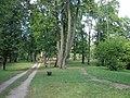 Dagdas muižas parks, Dagda, Dagdas novads, Latvia - panoramio.jpg