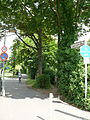 Dahlem Franz-Grothe-Weg.JPG