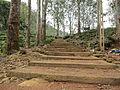 Dalhousie - Way to Sri Pada.JPG