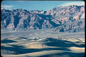 Death Valley National Park DEVA3747.jpg