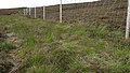 Deer Fence (An Sgòr Dubh) on Mar Lodge Estate (29JUL17) (5).jpg