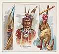 Deer Ham, Ioway, from the American Indian Chiefs series (N36) for Allen & Ginter Cigarettes MET DP838949.jpg