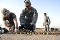 Defense.gov photo essay 080620-F-9876D-233.jpg
