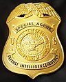 Defense Intelligence Agency Special Agent Badge.jpg