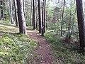 Degučių sen., Lithuania - panoramio (170).jpg
