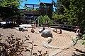 Denver Zoo 4.jpg