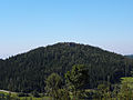 Der Herzogreitherberg mit dem Herzogreitherfelsen.jpg