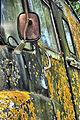 Derelict Van (2518387681).jpg