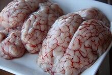 Cervelli di agnello