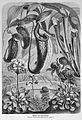 Die Gartenlaube (1875) b 160.jpg