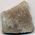 Dinosaur eggshell fragment (Upper Cretaceous; Patagonia, Argentina) (15545872935).jpg