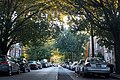 Ditmars Residential Neighborhood in Fall of 2012.jpg