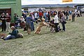 Dog fight by the chip van - geograph.org.uk - 1516290.jpg